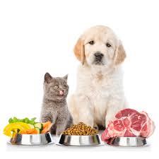 plano nutricional